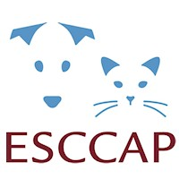 ESCCAP UK & Ireland News Item