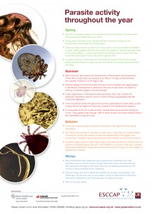 Parasite Activity Poster