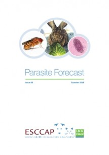 Summer Parasite Forecast: Issue 6