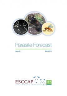 Spring/Summer Parasite Forecast: Issue 9