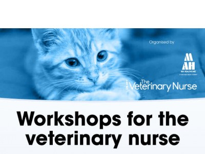Workshops for the veterinary nurse