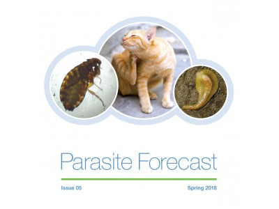 Spring Parasite Forecast: Issue 5