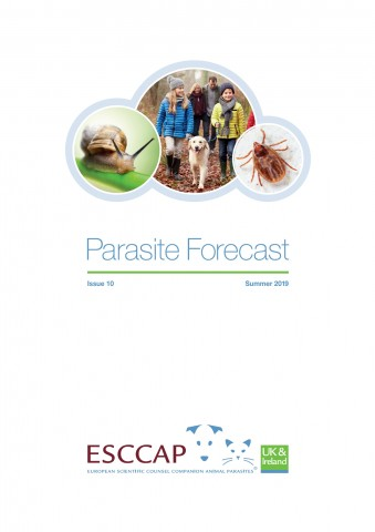 Summer Parasite Forecast: Issue 10