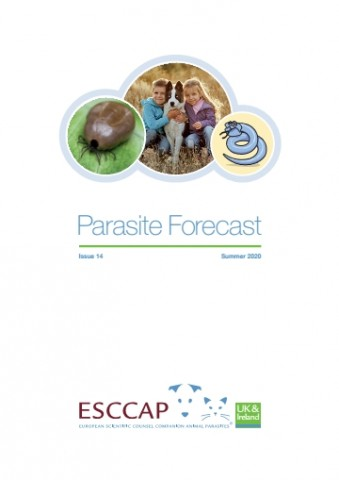 Summer 2020 Parasite Forecast: Issue 14